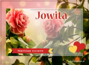 Imieniny Jowity