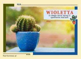 eKartki Imieniny Kartka dla Wioletty,