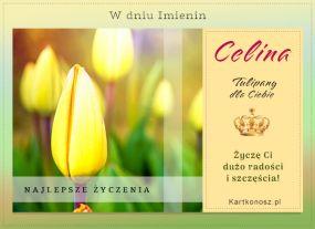 Kartka imieninowa dla Celiny
