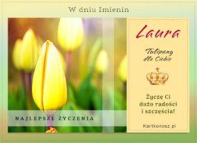 eKartki Imieniny Kartka imieninowa dla Laury,