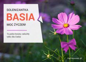 eKartki Imieniny Kwiatek dla Basi,