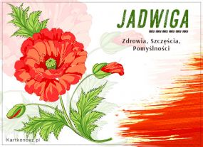 Kwiatek dla Jadwigi