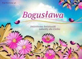 Kwiatuszki dla Bogusławy