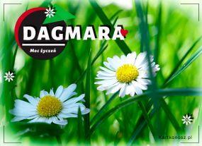 eKartki Imieniny Kwiatuszki dla Dagmary,