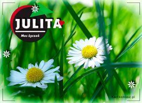 Kwiatuszki dla Julity