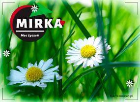 Kwiatuszki dla Mirki
