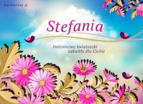 Kwiatuszki dla Stefanii
