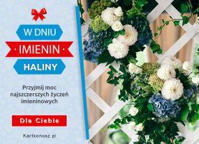 Kwiaty dla Haliny