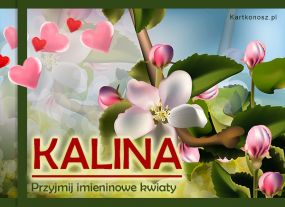 eKartki Imieniny Kwiaty dla Kaliny,