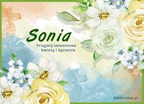 eKartki Imieniny Kwiaty dla Soni,