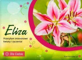 Kwiaty i życzenia dla Elizy