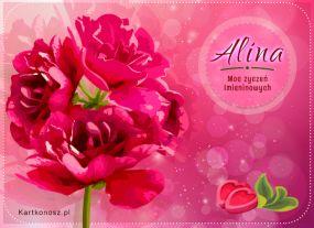 eKartki Imieniny Moc życzeń dla Aliny,