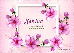 Moc życzeń dla Sabiny
