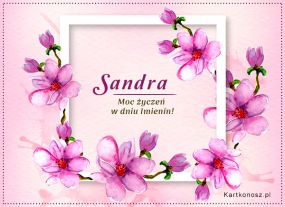 eKartki Imieniny Moc życzeń dla Sandry,