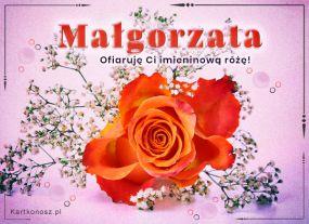 Na imieniny Małgorzaty