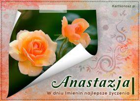 Róże dla Anastazji