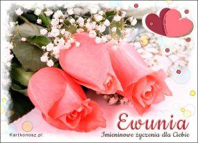 Róże dla Ewuni