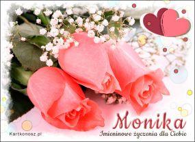 Róże dla Moniki