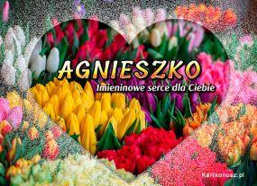 Serce dla Agnieszki
