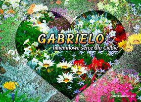 Serce dla Gabrieli