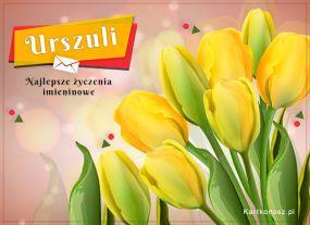 e Kartki Imieniny -> Imienne Damskie Tulipany dla Urszuli,
