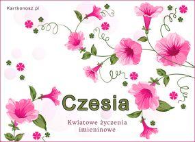 W dniu Imienin Czesi