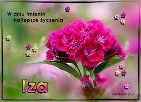 W dniu Imienin Izy