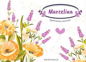 W dniu Imienin Marceliny