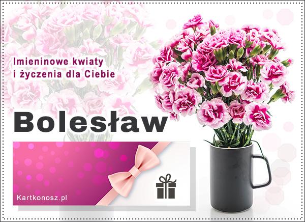Bukiet dla Bolesława