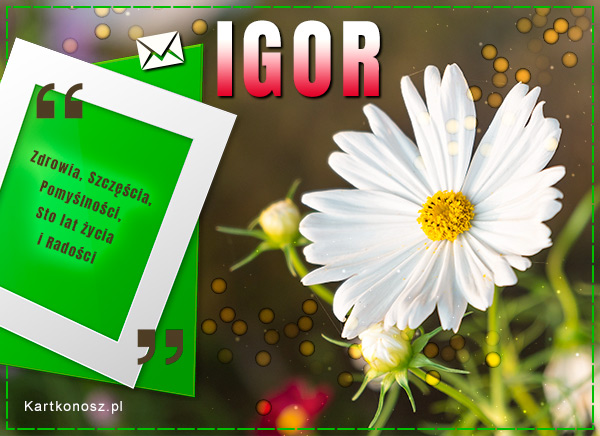 Dzień Imienin Igora