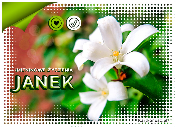 Imieniny Janka