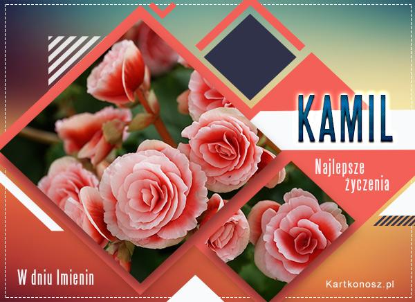 Imieniny Kamila