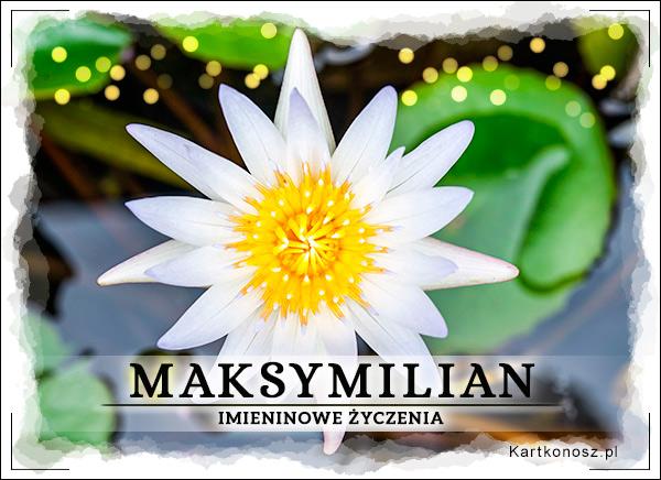 Imieniny Maksymiliana