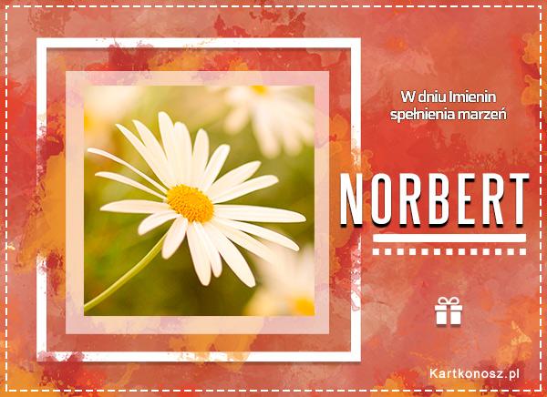 Imieniny Norberta