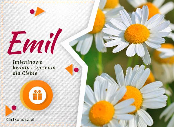 Kartka dla Emila