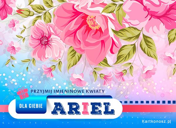 Kwiaty dla Ariela