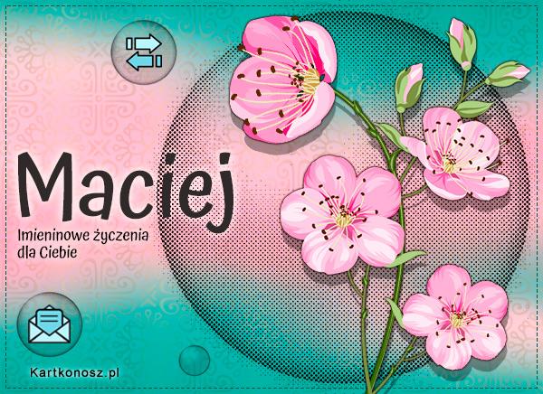 Maciej, Maciek, Maciuś