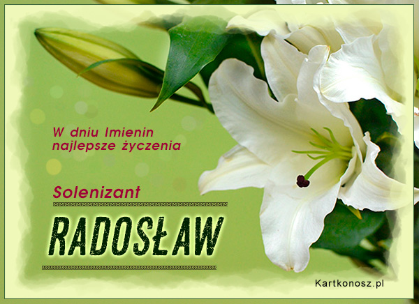 Solenizant Radosław