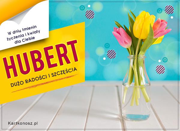 Tulipany dla Huberta