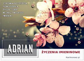 Adrian - Kartka Imieninowa