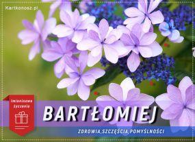 Bartłomiej - Kartka Imieninowa