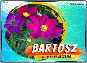 Bartosz - Kartka Imieninowa