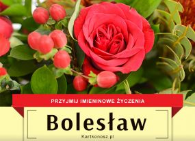 Bolesław - Kartka Imieninowa