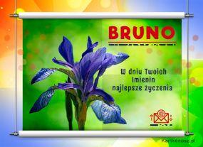 Bruno - Kartka Imieninowa
