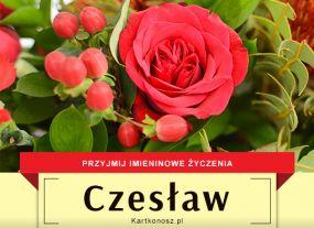 Czesław - Kartka Imieninowa