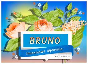 Dla Bruna