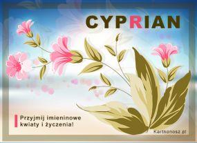eKartki Imieniny Dla Cypriana,
