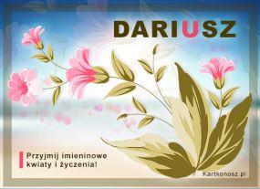 Dla Dariusza