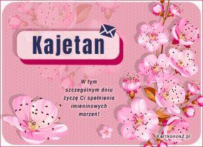Dla Kajetana