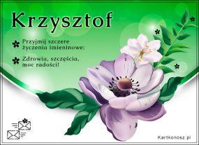 e Kartki  z tagiem: Kartka na imieniny Dla Krzysztofa,